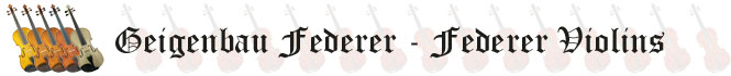 Federer.ca Header
